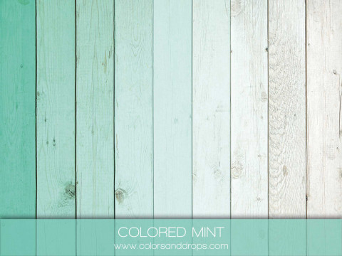 COLORED MINT
