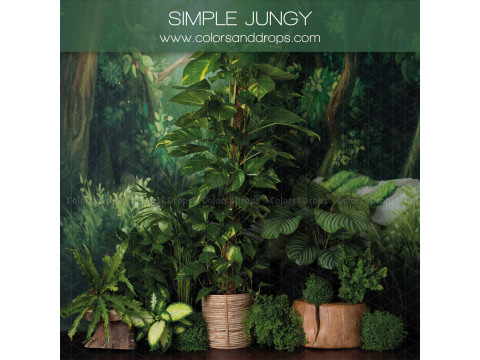 SIMPLE JUNGY